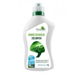 Nawóz do roślin zielonych 1 l Florendi NutriActiv®