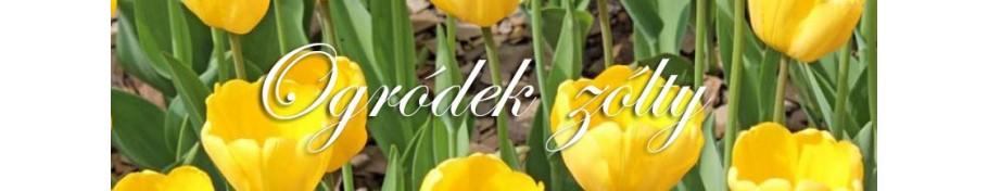 Ogródek żółty