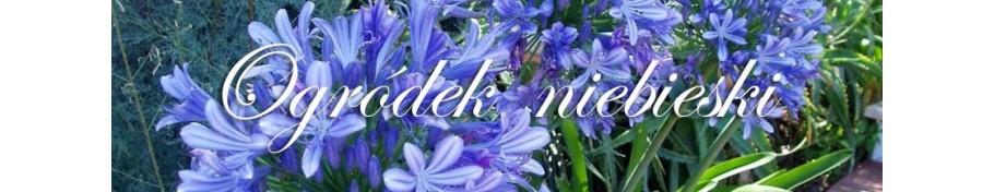 Ogródek niebieski