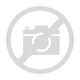 Monarda hybrida Lilac Prade Pysznogłówka ogrodowa